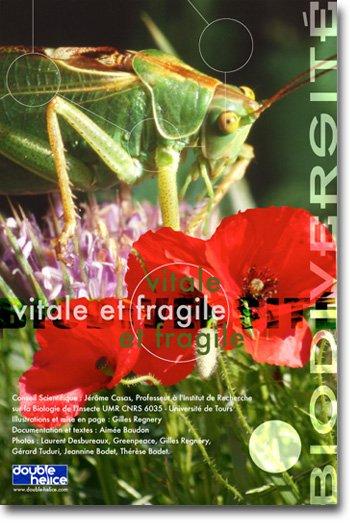 « Biodiversité, vitale et fragile »  |