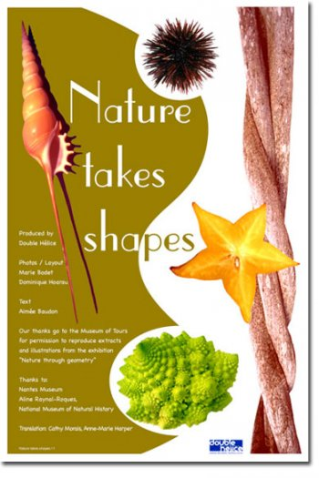 Nature takes Shapes