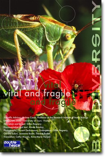 Biodiversity, vital and fragile