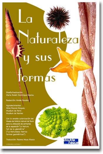 La Naturaleza y sus formas