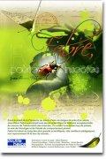 Fabre, poète des insectes