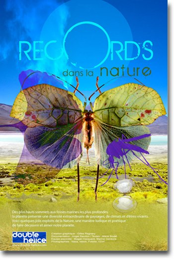 Records dans la Nature