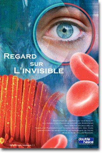 Regard sur l'invisible